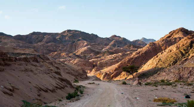 Sinai desert, South Sinai, Egypt