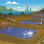 #3|Aquakultur – wirklich so gut wie alle sagen?|
