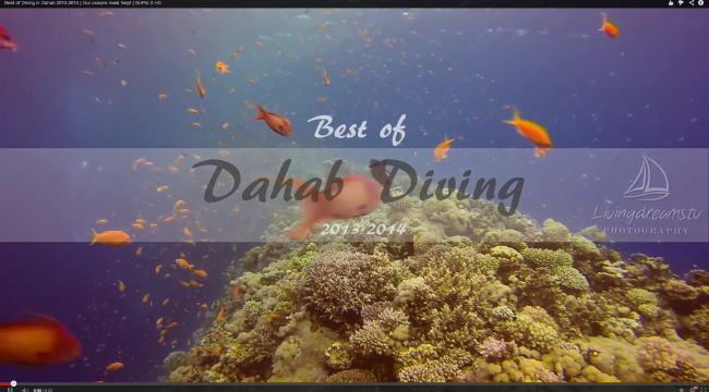 Best of Diving in Dahab 2013-2014 with GoPro