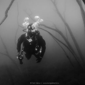 My first underwater images | Dive Trip to Hemmoor, Germany