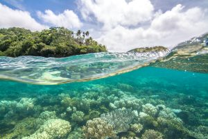 Pacific ocean, Fiji, Beqa, Coral Reefs, Tropics