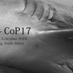 CoP17 - Sharks and rays at CITES, Johannesburg 2016