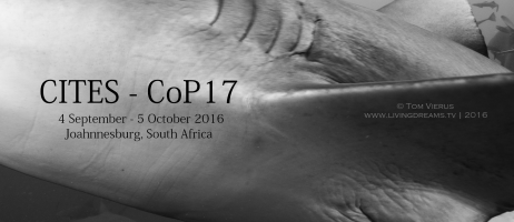 CoP17 – Sharks and rays at CITES, Johannesburg 2016
