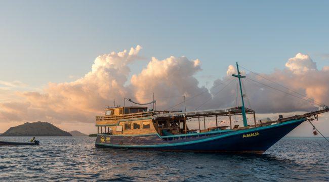 Liveaboard, Diving, National Park, Flores, Labuan Bajo, Indonesia