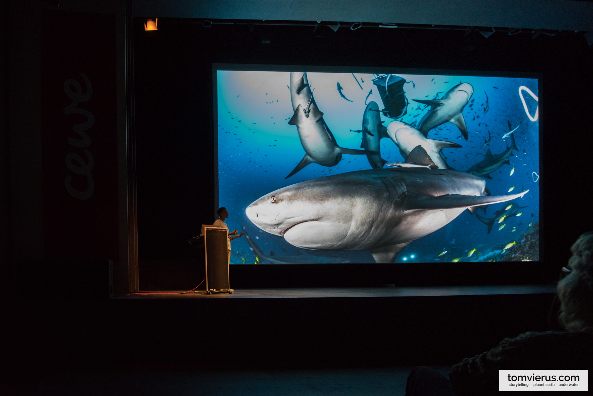 Glanzlichter, Tom Vierus, public talks, sharks, Naturfototage