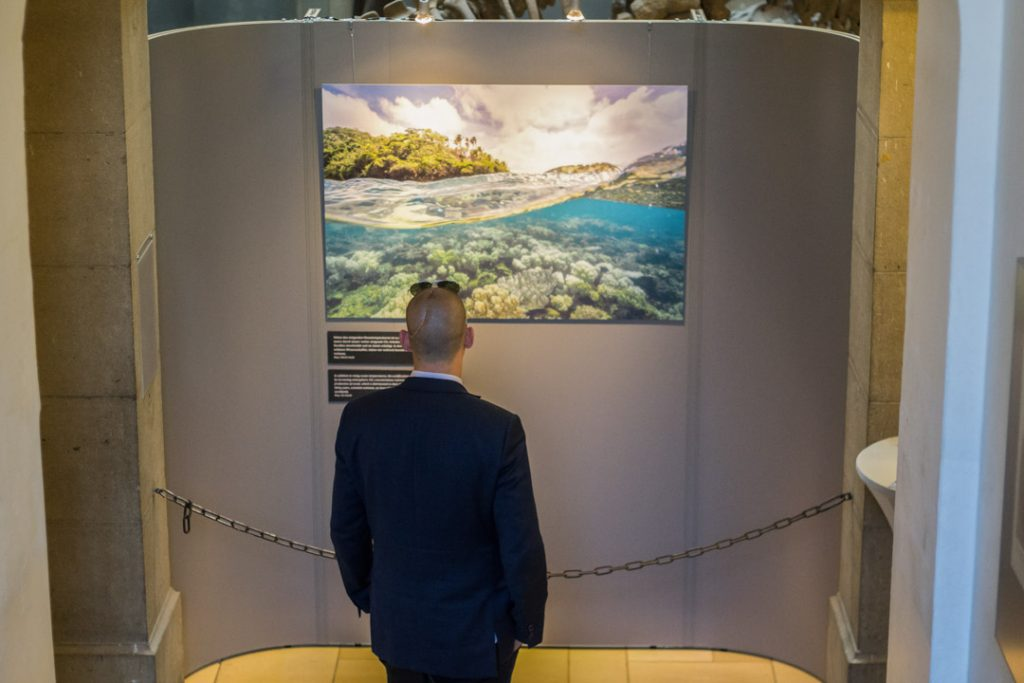 Tom Vierus, Fotoaustellung, Coral reefs, exhibition, munich