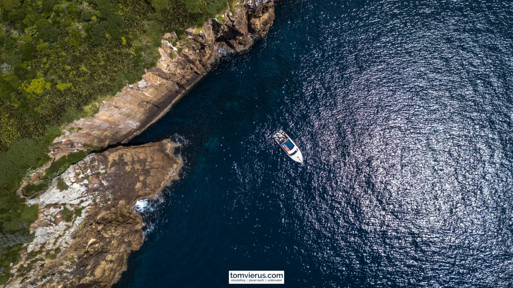 Drone, Poor Knights Islands, Dive Tutukaka, Diving, New Zealand, MPA