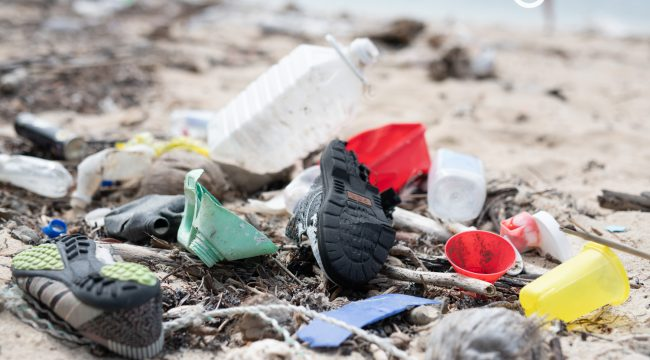 Plastic Pollution in the Pacific // New Short Film
